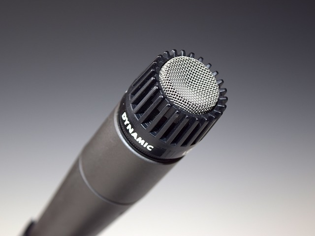microphone-398738_640.jpg